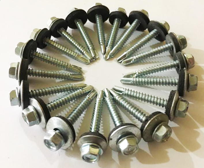 Galvanized Screw